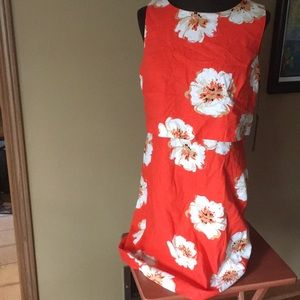 NWT knee length Floral dress size 14
